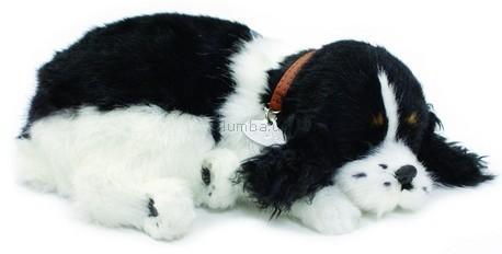 Детская игрушка Perfect Petzzz Кокер-спаниель