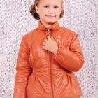 Куртка демисезонная для девочки 116р