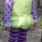 Флисовый костюм Gymboree на 4-5 лет