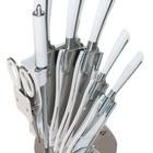 Ножи кухонные в наборе швейцарские К750