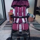 Продам коляску Inglesina Trip (Инглезина) б/у фиолетовую