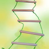 Веревочная лестница БУК для улицы, дома, спортивных уголков, от производителя