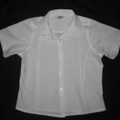 белая рубашка в школу на 5-6 лет, девочке, короткий рукав