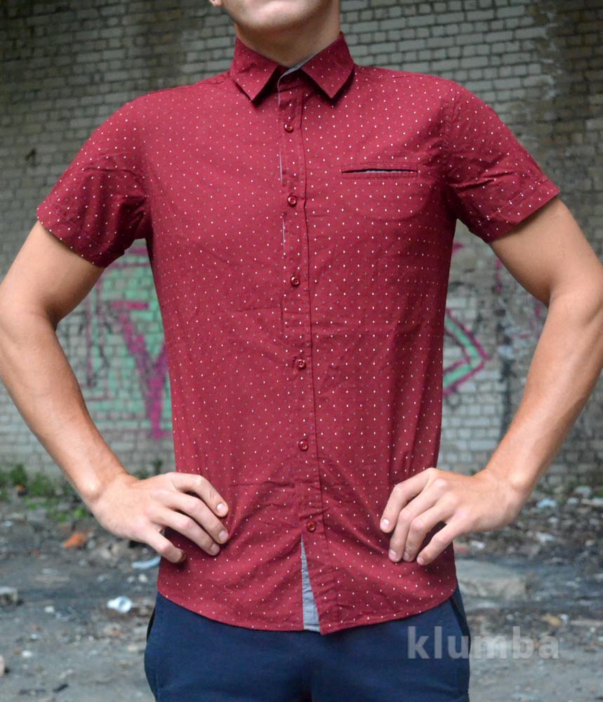 Рубашка gissi. фото №1