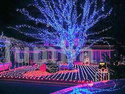 Гирлянда нить светодиодная,оформление новогодней площади фото №3