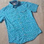 мужская рубашка Некст в ласточки