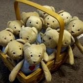 Фаблер БЬЁРН Мягкая игрушка медвеженок