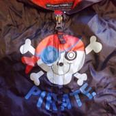куртка дождевик череп пираты
