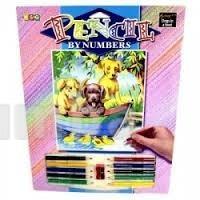 Набор для творчества!!!раскраски по номерам карандашами фото №1