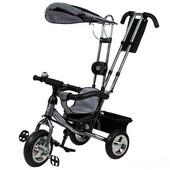 Скидка! Велосипед 3-х колесный Mini Trike (серебристый). артикул LT950 сріблястий