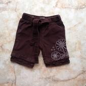 Вельветовые шорты на девочку фирма Hema размер по бирке 56 (реально до годика)