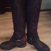 Steve Madden сапоги (ботинки дутики угги сникерсы кроссовки )