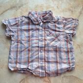 Рубашка на мальчика фирмы Baby Club размер 86