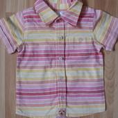Фирменная рубашка  M&Co  малышу 6-9 месяцев состояние новой