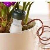 автоматический полив для домашних растений