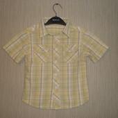 Рубашка George (Джордж) на 3-4 года, 70гр по Акции-45гр