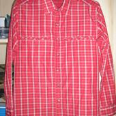 Рубашка мужская, футболка, тенниска.