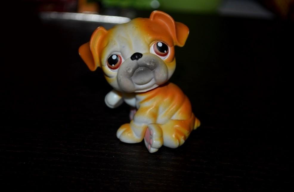 Петс шопы pets shop игрушки зоомагазин littlest pet shop lps фото №1