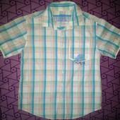 Рубашка  Cherokee на 7-8лет!!!100% х\б.Состояние отличное.