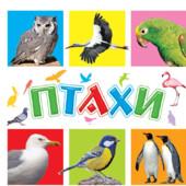 Книга для малышей птицы ранок птахи