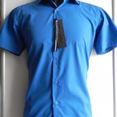 Новая рубашка M,L,2ХL