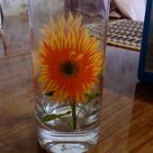 Новый набор из 6 стаканов Подсолнечник