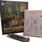 Раскопки останков динозавра Брахиозавр