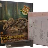Раскопки останков динозавра Трицератопс
