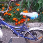 Не дорого детский велосипед