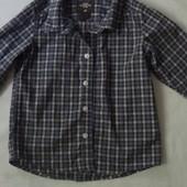 рубашка 80см H&M