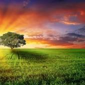 """Расклад """"Будущее"""" ,майбутнє на всі сфери життя."""