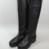 стильные женские сапоги демисезон зима Модель:1012-16, черная кожа