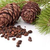 Орехи Кедровые орешки качество 2016 самые вкусные полезные Крутые