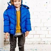 Клевые теплые курточки для модников Nativo