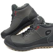 Ботинки Ecco Biom на меху, натуральная кожа 2 цвета