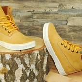 Мужские Демисезонные Ботинки Timberland