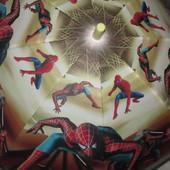 Зонты  для мальчика  Spider man