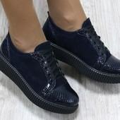 Туфли замша синие на шнуровке, носик питон