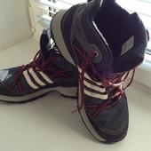 Спортивні черевики Adidas-39