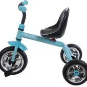 Трехколесный велосипед Sunbaby A28-1 два цвета