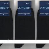 Носки мужские демисезонные х/б с лайкрой Житомир, 42-45 размер, чёрные и асорти