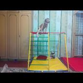 Продам детский спортивный уголок Непоседа