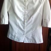 Белая блузка в офис или школку