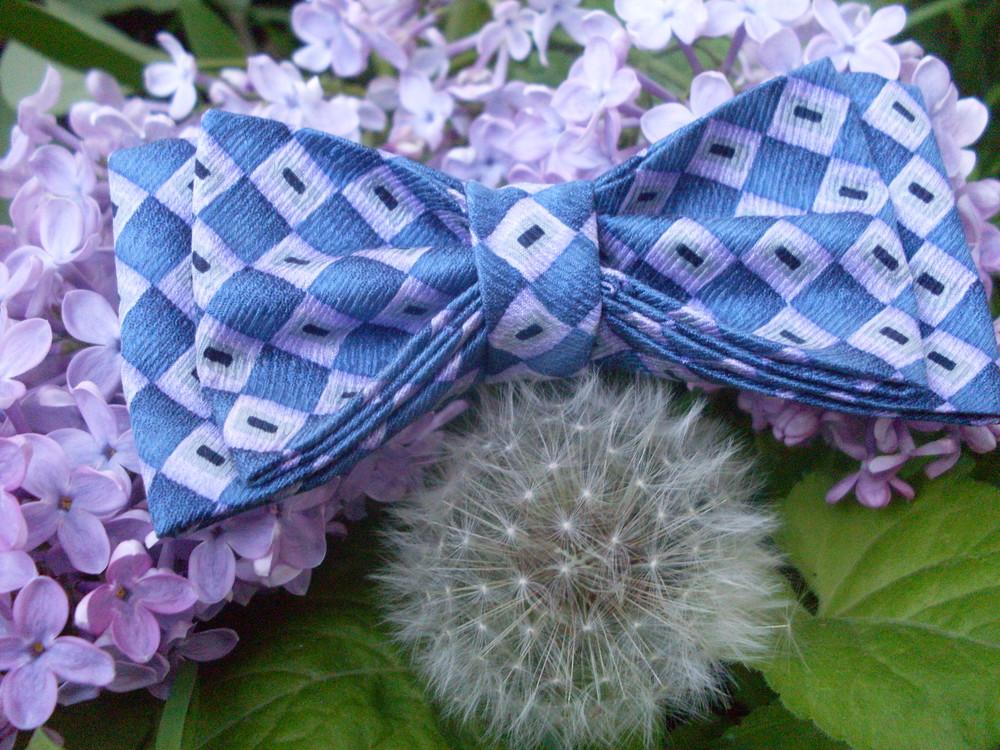 Эксклюзивные бабочки для мальчиков фото №1