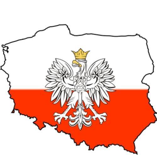 Польша под заказ,доставка из польши,все польские сайты,опт,розница,ваш прямой посредник фото №1