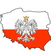 Польша под заказ,доставка из Польши,все польские сайты,опт,розница,Ваш прямой посредник