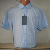 Распродажа! Мужская рубашка с коротким рукавом Piazza Italia.