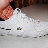 кроссовки lacoste 47 размер