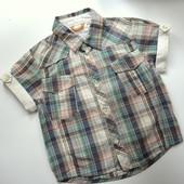 Рубашка в клетку Timberland (1,5-2 года)