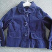 піджачок від маталан. на 3 роки
